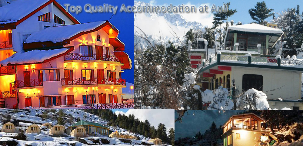 auli tours packages
